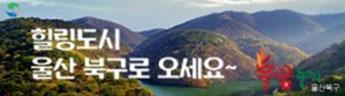 울산 북구청